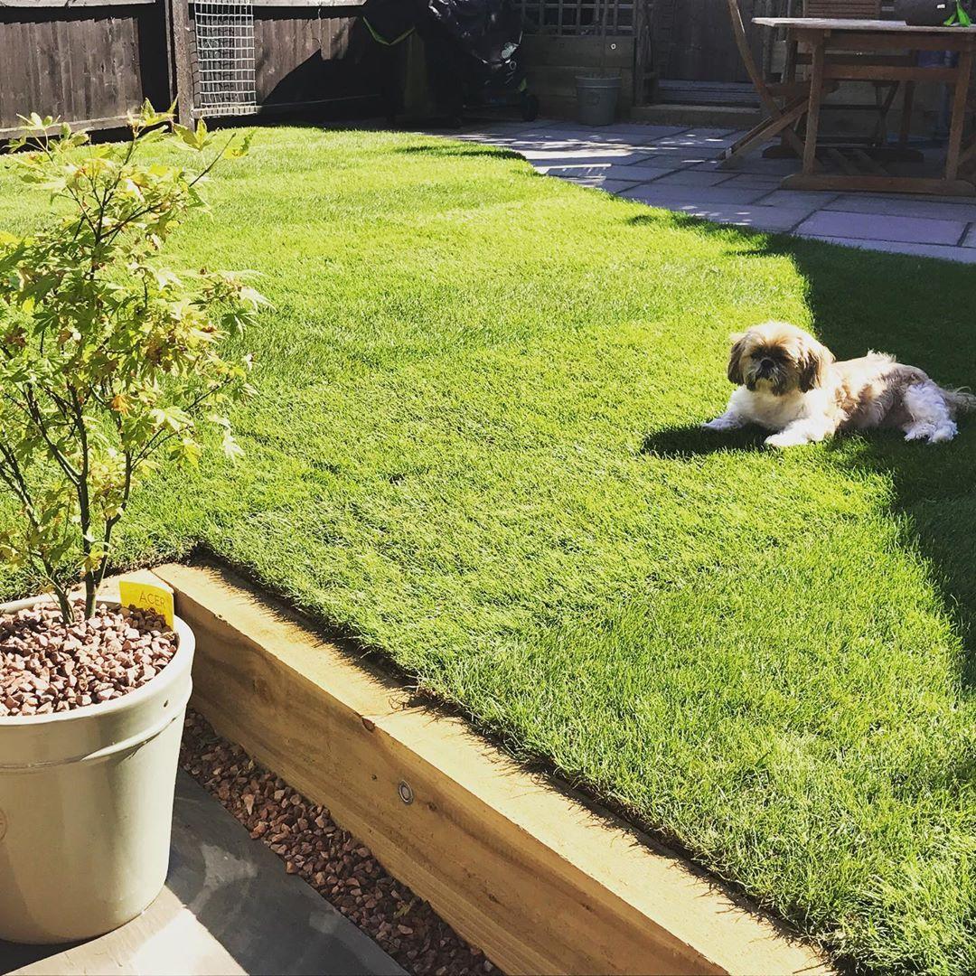 garden edging with oak sleepers